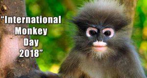 International Monkey Day 2018, World Monkey Day 2018